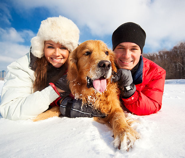 Woman and man in the snow with dog